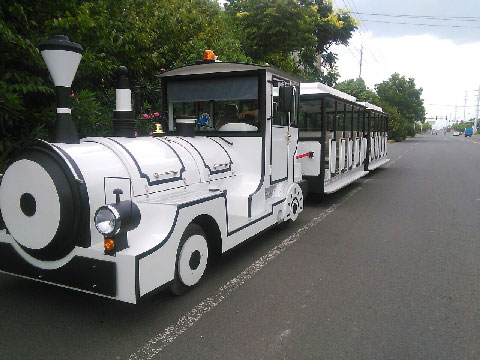 Trackless Trains For Sale Indonesia - Beston Company