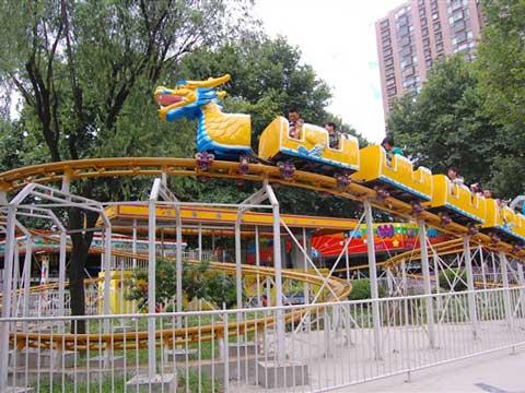 BNRC 22 - Slide Dragon Roller Coaster For Sale